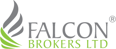 Falcon Brokers developed by wewebit